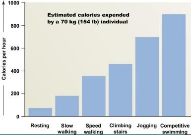 caloriecount pearson education